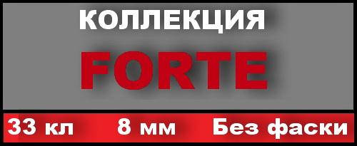Forte 33 кл