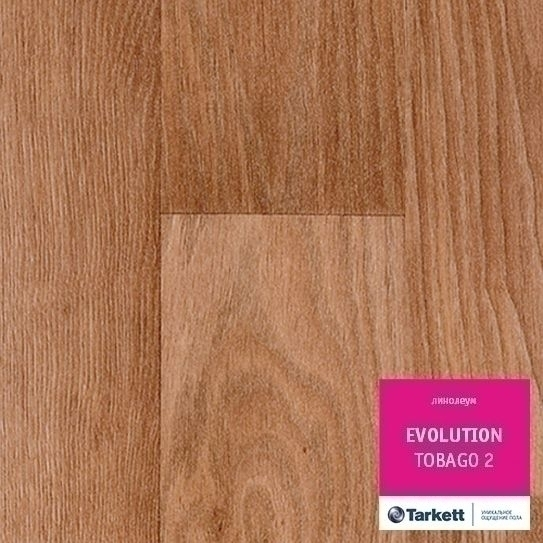 Линолеум Tarkett (Таркет)  Эволюшн Evolution Тобаго-2