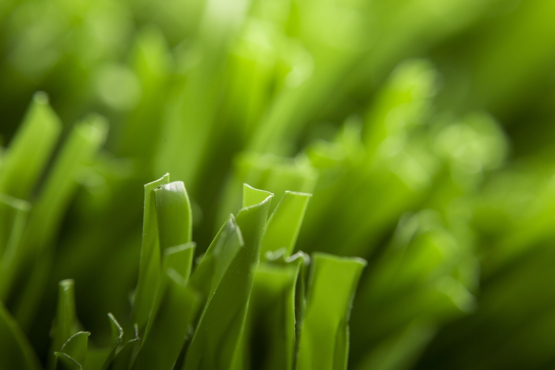 Искусственная трава Hatko (Турция) - Duograss