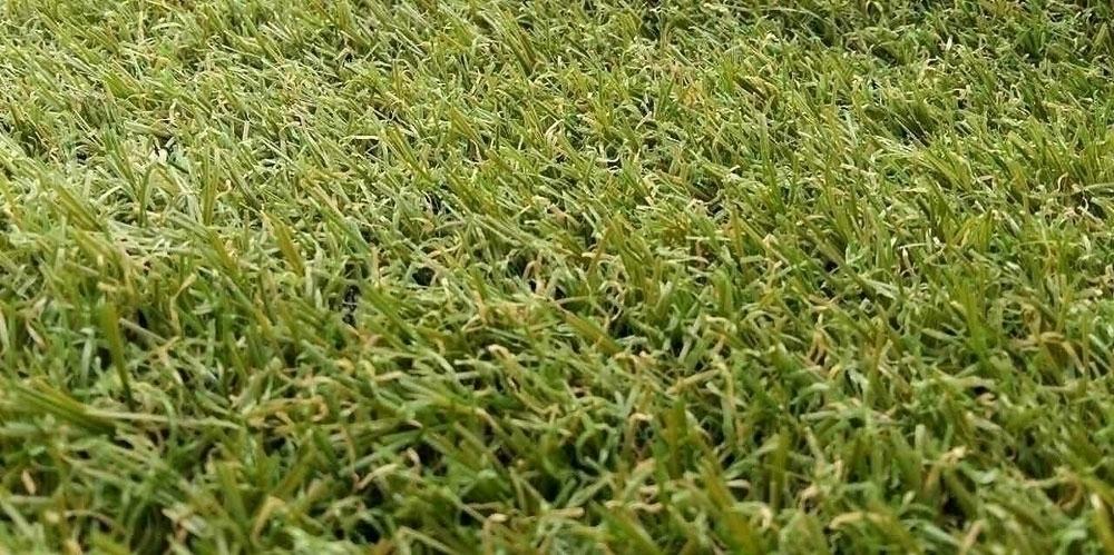 Искусственная трава Oryzon Astra (Высота ворса 18 мм) изображение 7